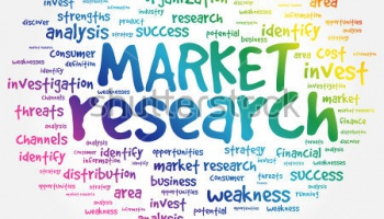 Consultancy for Investigating Turkish Market